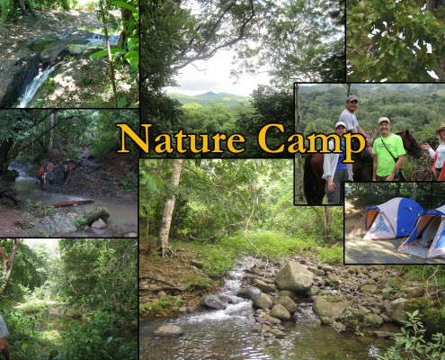 naturecamp
